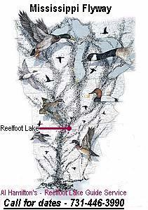 Al Hamilton's Reelfoot Lake Waterfowl Guide Service